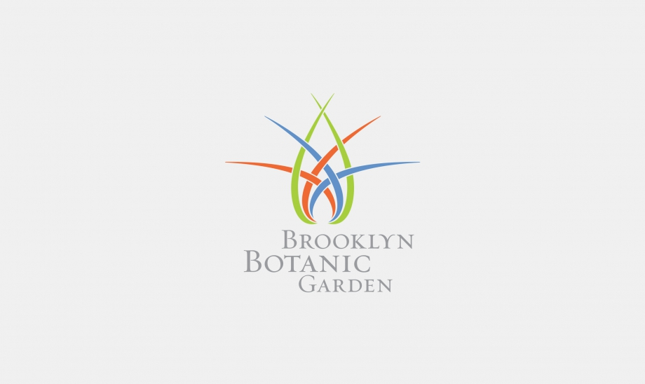 Brooklyn Botanic Garden: Bringing Brooklyn to Life image 1